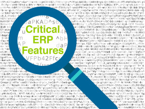 critical_ERPfeatures-01-1024x768